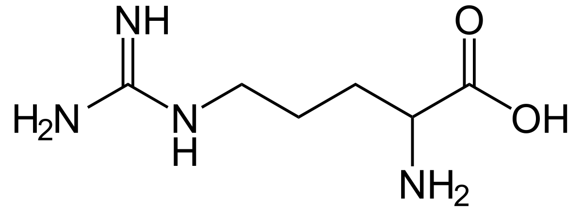 Arginine - structural formula