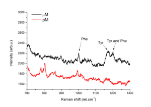 SERS spectra of Insulin on S-Silver obtained by Dr. Adriana Annušová